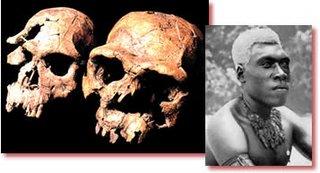 Homo_Erectus_was_Human